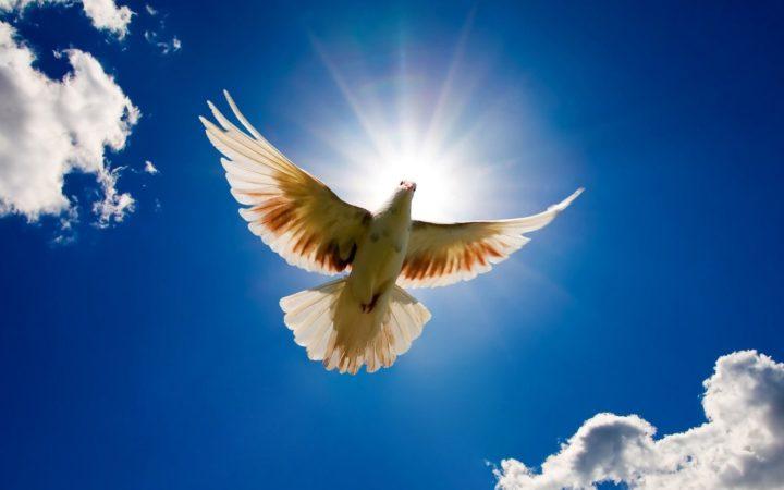 """""""Джапа, единение со Вселенной, мир, гармония"""""""