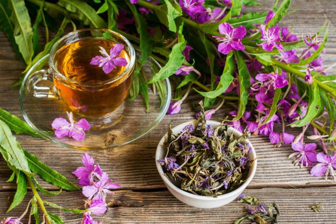 горячий травяной чай
